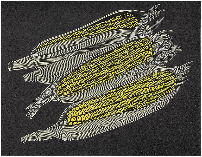 Corn-sm